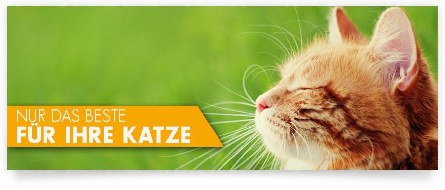 InnovaPet Balance - Nur das Beste für Ihre Katze - Nahrungsergänzung - Vitamine - Gelenke